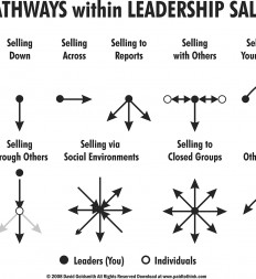 Figure-13.2-Pathways-Within-Leadership-Sales