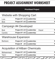 Figure-3.18-Project-Assignment-Worksheet